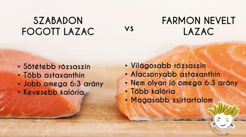 wild_caught_salmon_vs_farmed_salmon_header_hu